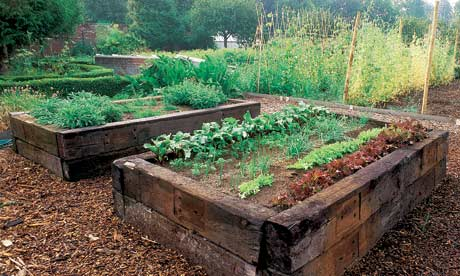Garden Design Garden Design with Raised Garden Beds on Pinterest